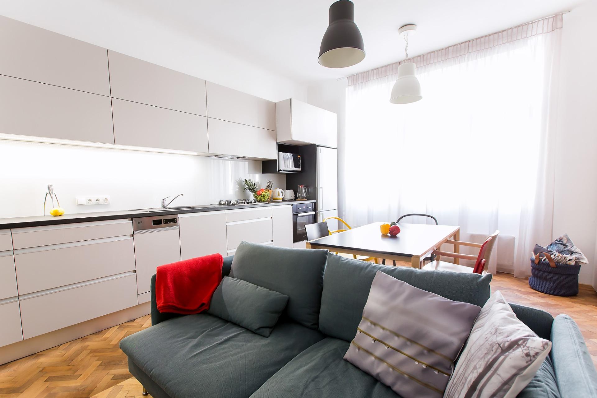 Large living room with kitchen a dining room   Barbora Grünwaldov á